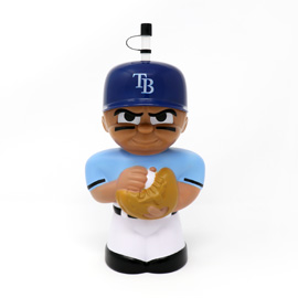 Tampa Bay Rays Big Sip MLB Water Bottle
